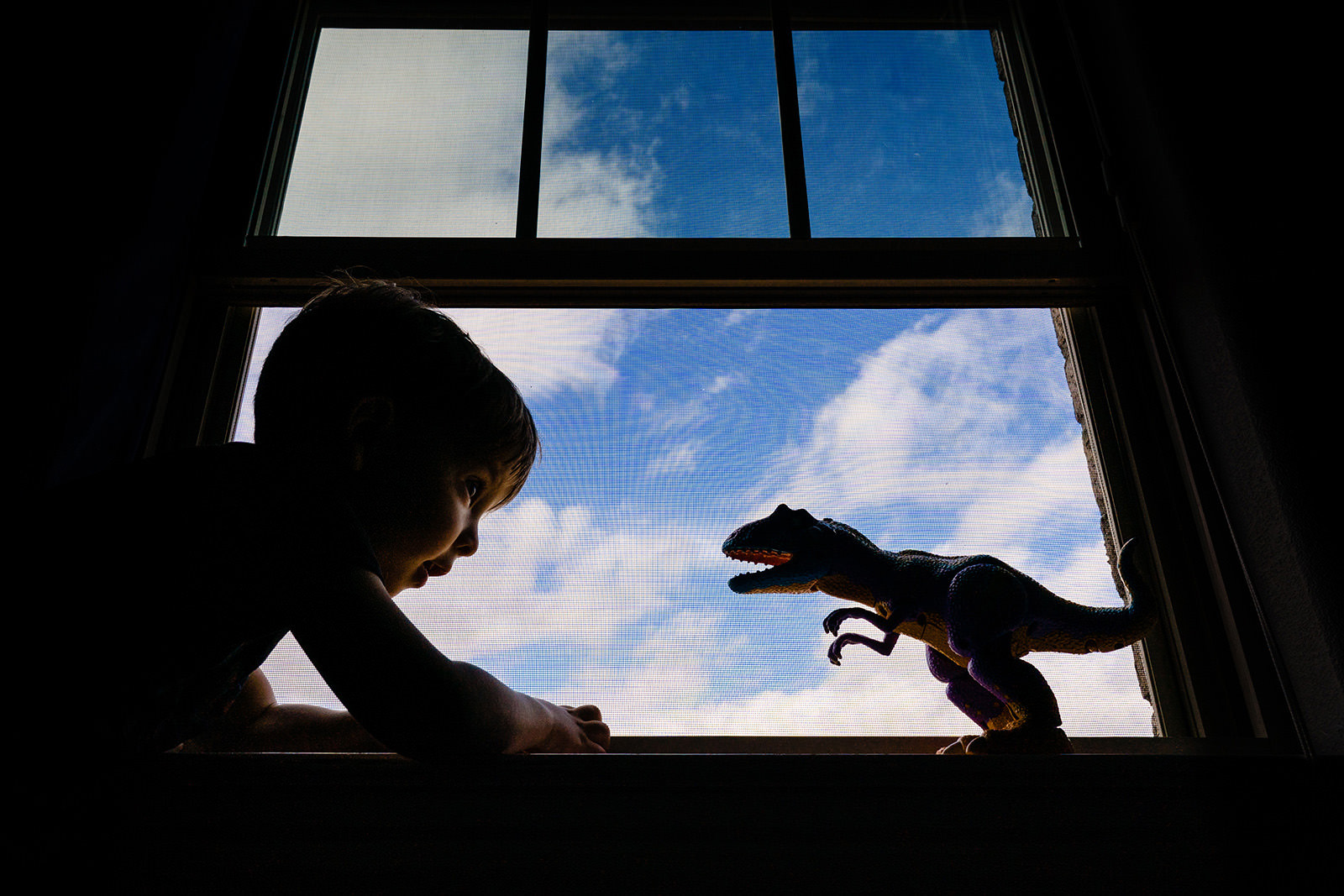 Boy plays with dinosaur toy near window with clear blue sky outside