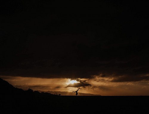 See the winners of the Click photo contest: dark shadows